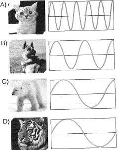 8-sinif-fen-bilimleri-ses-16-optimized