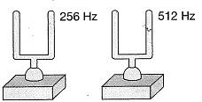 8-sinif-fen-bilimleri-ses-dalgasi-ve-sesin-ozellikleri-28