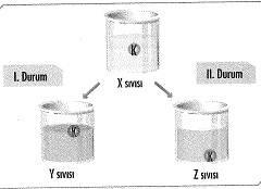 8-sinif-kuvvet-ve-hareket-19-optimized