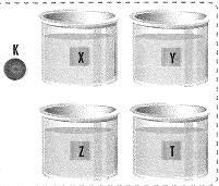 8-sinif-kuvvet-ve-hareket-cozumlu-3-optimized